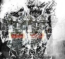 Spider envy  by Danica Radman