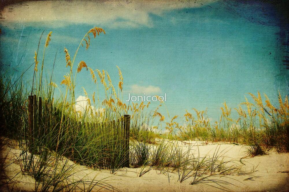 Dunes 2 by Jonicool