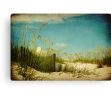 Dunes 2 Canvas Print