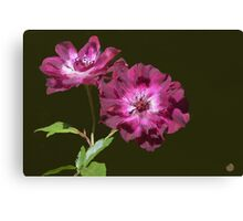 The Floral Duet Canvas Print