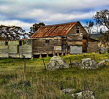 Snowy Mountains Shearing Shed by Dulcie Dal Molin