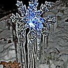 The Pattern of Melt, Freeze, Melt, Freeze by Jane Neill-Hancock