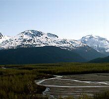 Exit Glacier, Seward, Alaska by C1oud