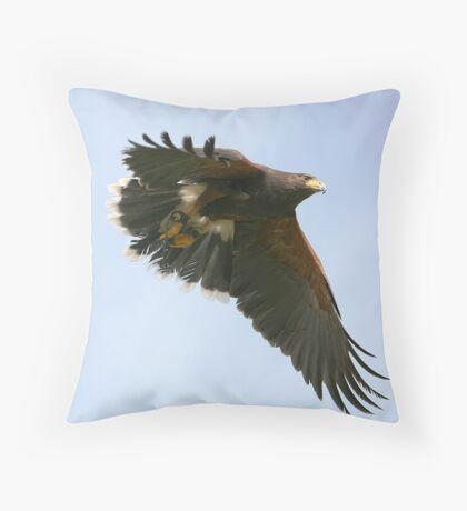 The Harris Hawk Throw Pillow