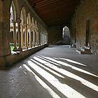 Saint-Hilaire: The cloister by Fran0723