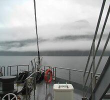 Dampness on Doubtful Sound by kbend