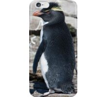 Love those Whiskers! iPhone Case/Skin