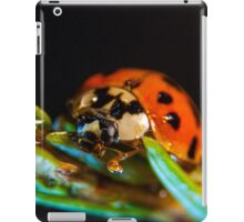 My world macro - Ladybug iPad Case/Skin
