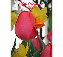 Kissing Cousins, Happy Valentine's Day! Photographic Print