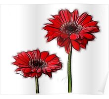 Two Fab Flowers Poster
