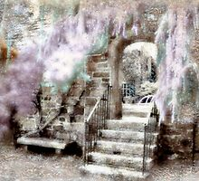 Step Into A Cotton Candy World - Infrared Series by Jane Neill-Hancock