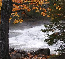 Bond Falls in the fall by jrier