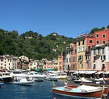 BOATS IN THE HARBOUR -  PORTOFINO -ITALY by kazaroodie