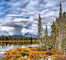 Autumn Delight by Vickie Emms