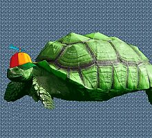 Hip hop Turt by Monjii
