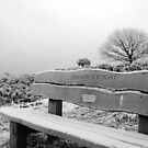 Frosty Bench by Tony Hadfield