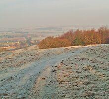 Frosty Wharfedale by WatscapePhoto
