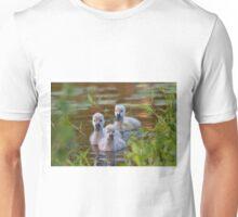 The Baby Swan Trio Unisex T-Shirt