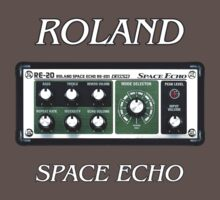 Roland Space Echo by shfandon