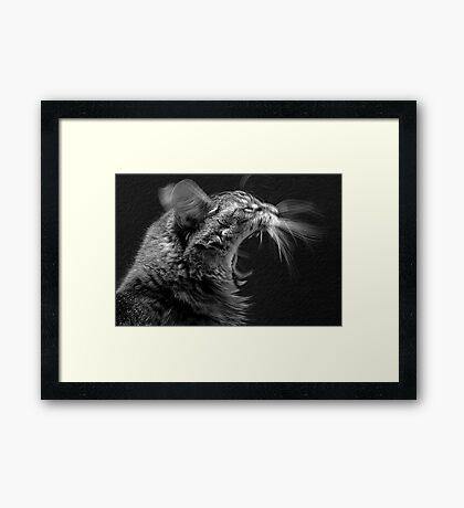 Roar - Frodo Framed Print