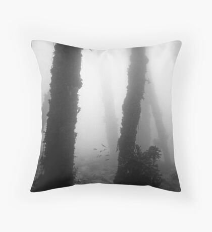 Clifton Gardens Throw Pillow