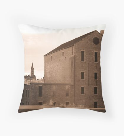 The Old Willson Carbide Mill and a View of Parliament Throw Pillow