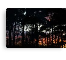 As I Dream  Canvas Print