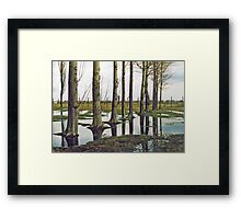 Birkenau - Tree - Reflection  Framed Print