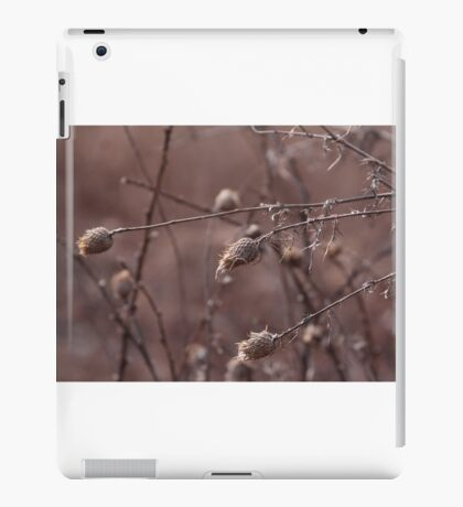 Spring Seeds iPad Case/Skin