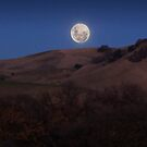 The biggest Lunar Rise of the Year by MattGranz