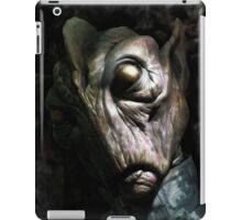 Fan Head iPad Case/Skin