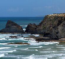 Algarve Cliff by Amy Polkowski