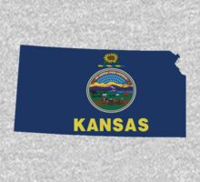 kansas state flag by peteroxcliffe