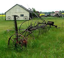 OLD FARM EQUIPMENT by Larry Trupp