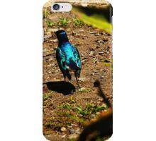 Iridescent bird iPhone Case/Skin