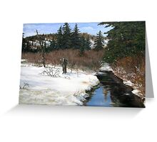 Spring fed creek East of Terrace Bay on Hwy 17 Greeting Card