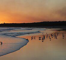 Smoky Sunset by George Petrovsky