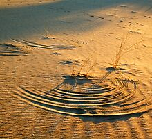 Circles in the sand by Bennie Vivier