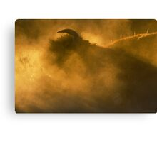 Thunder Beast Makes Fire Canvas Print