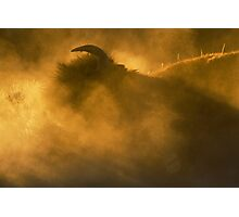 Thunder Beast Makes Fire Photographic Print