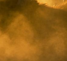 Thunder Beast Makes Fire Sticker