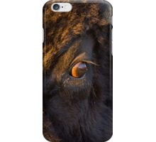 Intruder iPhone Case/Skin