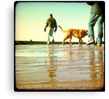 Exmouth Beach Part 1 Canvas Print