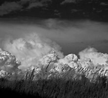 Storm Brewing by GailDouglas