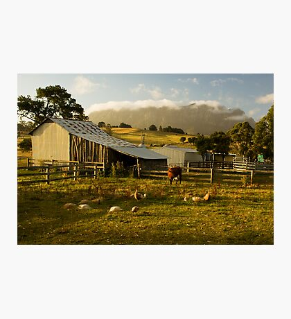 The Farmyard Photographic Print