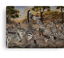 """Zebra Stallions"" - Oil Painting Canvas Print"