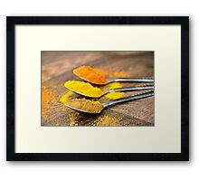 Chilli Cumin Turmeric Indian Spices on Silver Spoons Framed Print