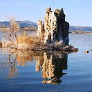 Reflection on Mono Lake Northern California by loiteke