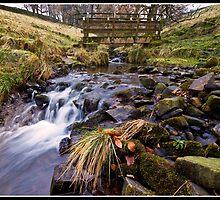 Footbridge and stream near Downham by Shaun Whiteman