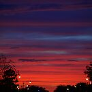 Kissimmee Lights by paintin4him
